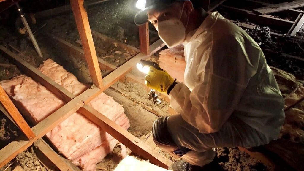 A contractor crouches in an attic above a dropped ceiling with insulation positioned ready to be installed.