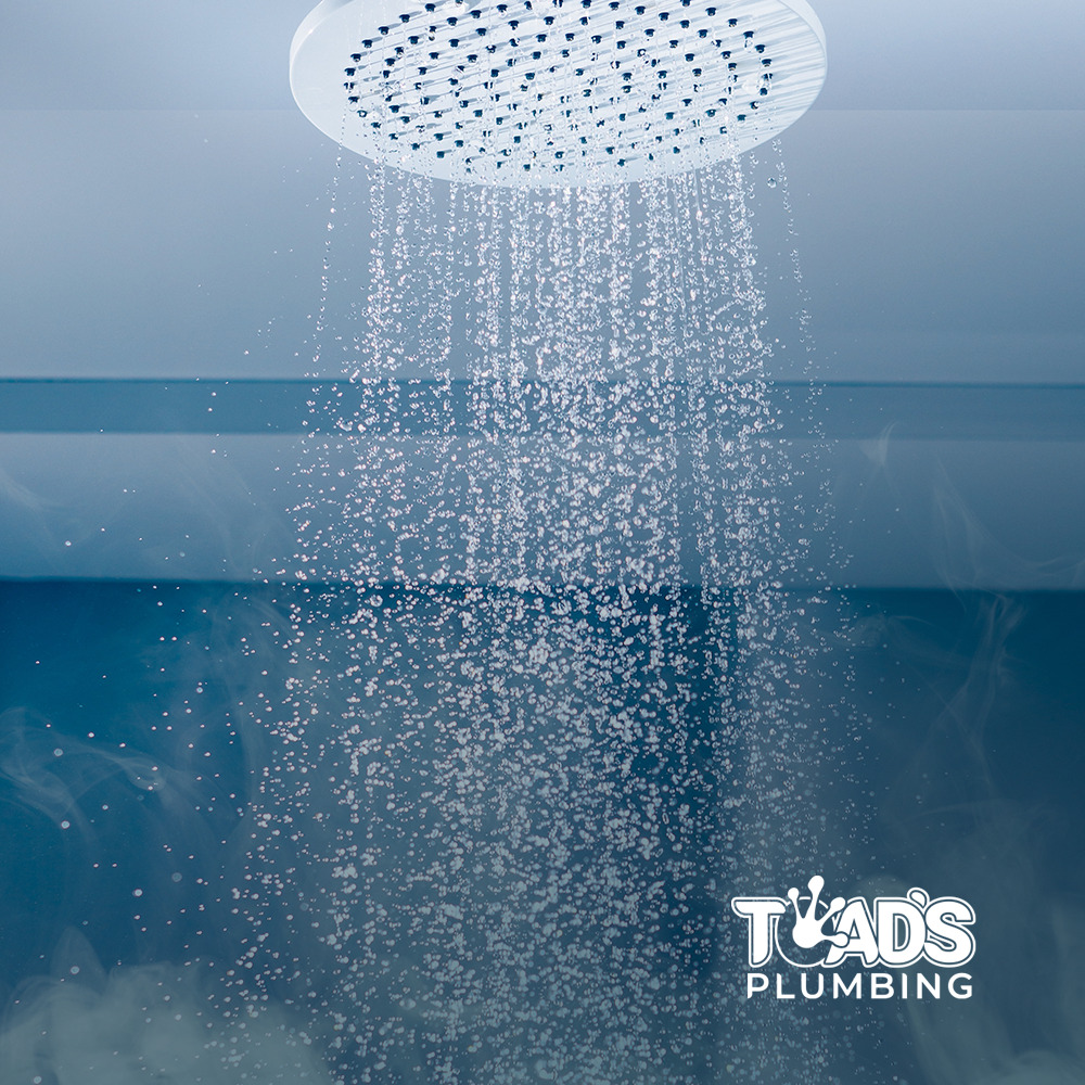 toad's Plumbing, shower head image